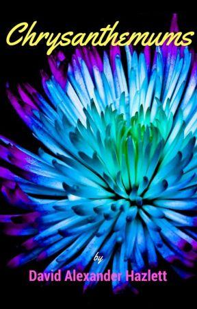 Chrysanthemums by DavidAlexanderH