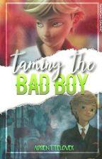 Taming the Badboy; Adrinette AU [Taming Series #1] ✅ by AdrientteLover