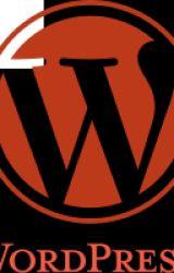 Making wordpress website by rimultd