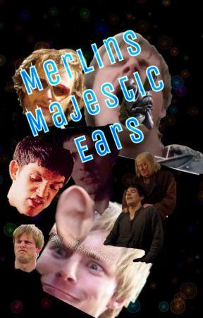 Merlins Majestic Ears. by MerlinsEars