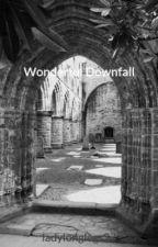 Wonderful Downfall by ladylonglegs27