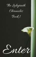 The Labyrinth Chronicles-Book One: Enter by DreamBurstStar