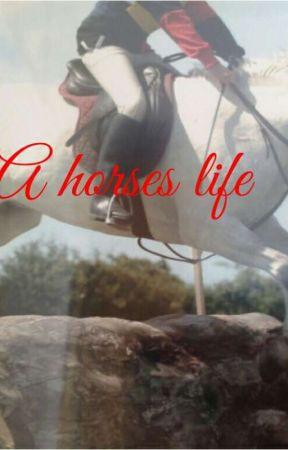 A horses Life  by Emmabooboo2122