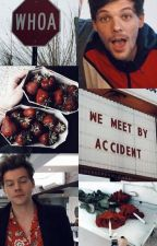 We meet by accident. - Larry Stylinson CZ by eveoconner