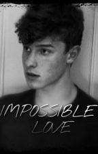 •Impossible Love• Shawn Mendes by LILBEACHIE