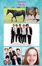 The Horse Diaries (A One Direction Book) by Rudy_Luvs