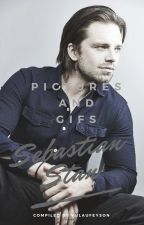 Sebastian Stan - Pictures And Gifs by MineralLaufeyson