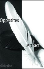 Opposites Attract by InfiniteIdeas