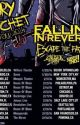 Bury The Hatchet Tour 2014 by RaisedByWuuves