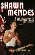 Shawn Mendes Imagines by daydreamer_sophie