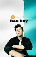 Bad Boy ¤ Mendes (Ara Verildi) by shawnastikkiz