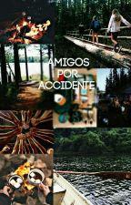 Amigos por Accidente by HarAli