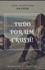 Tudo Por Um Crush! by SabrinaSantos524