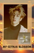 My Citrus Blossom - Mark Tuan by yoomikiyo