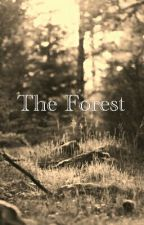 the forest by tamaya7070