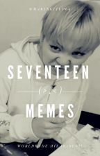 SEVENTEEN MEMES! by makingitup66