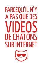 Parce qu'il n'y a pas que des vidéos de chatons sur internet by cestdoncvrai