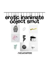 Erotic Intimate Object Smut  by -thegayshippers