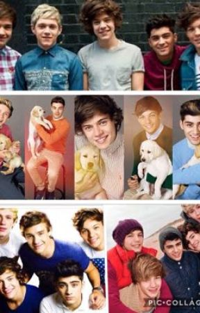 One Direction-Since The Beginning by MadisonOnline2005