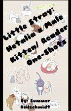 Little Stray: Hetalia x Kitten!M!Reader by SummerBeilschmidt