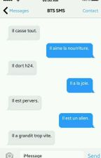 BTS SMS [French ver.] by v_pastaeque