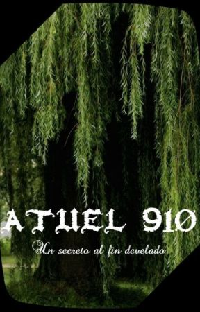 Atuel 910 by Diethard-Ried