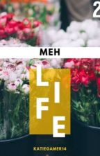 Meh Life 2 by KatieGamer14
