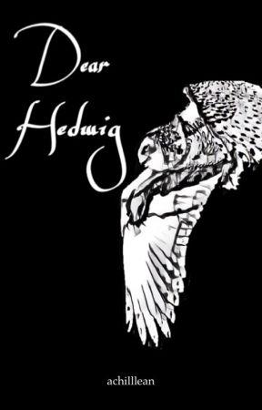 Dear Hedwig by achilllean