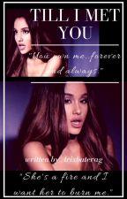 Till I Met You (Ariana/You) by arixbuterag
