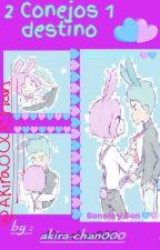 2 Conejos 1 destino by akira-chan000