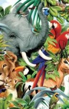 Animals by SnowandCats