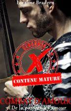 Combat d'Amour T3 (scènes explicites non censurées) by Loraline_Bradern