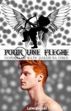 Pour Une Flèche by LionDargent