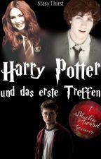 Harry Potter und das erste Treffen by StasyThirst
