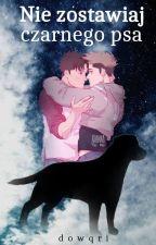 Nie zostawiaj czarnego psa [Jean x Marco] by Dowqri
