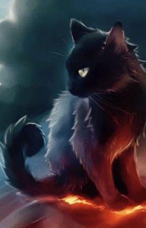 belle chatte foncée