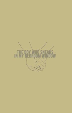 the boy who sneaks in my bedroom window (adaptada) (lutteo) by rightnextorugge