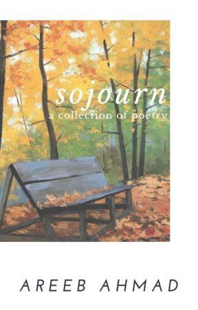 Sojourn by Areeb_Ahmad