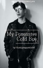 My Posessive cold boy by Cntyaaa