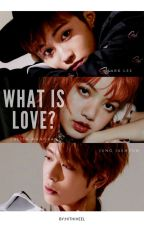 what is love? [ML LM JJH] by hithiheel
