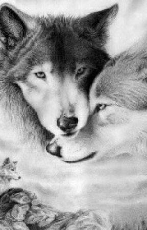 Poze cu lupi alfa
