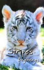 Striped - Beginnings by poppy14s