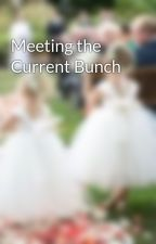 Meeting the Current Bunch by EmerHansen