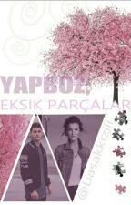 YAPBOZ; Eksik Parçalar by basakkiziii