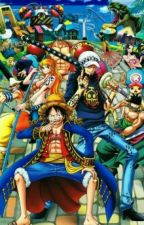One Piece X Reader by Shambles_Queen