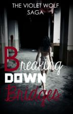 Breaking Down Bridges ▸ Hunger Games by SCandGG