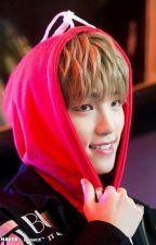 Adore You (Seventeen X Reader) by dearlyjeonghan