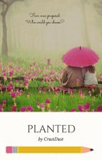 Planted by CrustDust