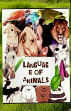 Language of Animals by syedafatima001