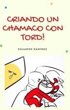 Criando Un Chamaco Con Tord.  by -Edu_Stref